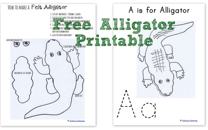 Alligator Printable -- make your own #preschool -- Wildflower Ramblings