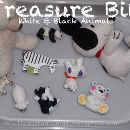 Treasure Bin: White & Black Animals