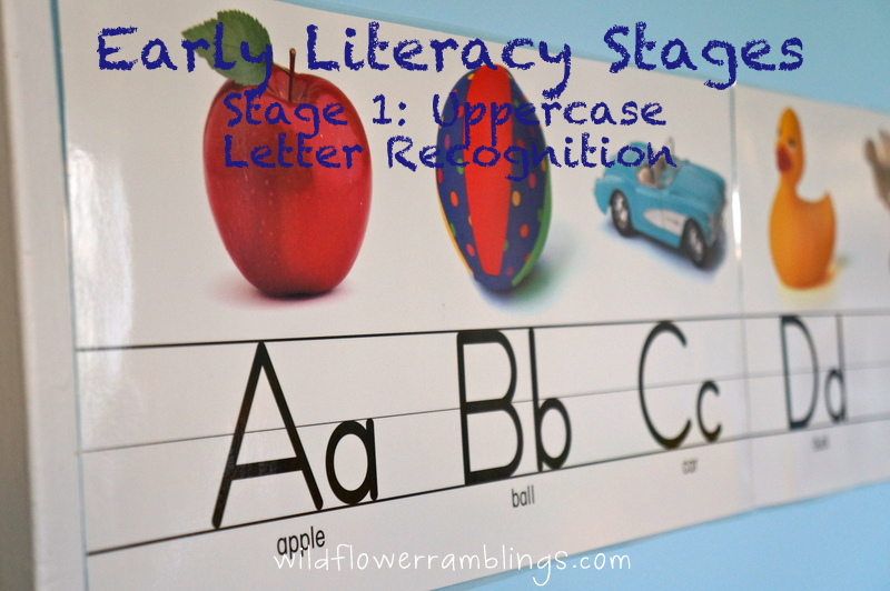Image Result For Developing Literacy Skills Whole Development Of Literacy Skills Craft