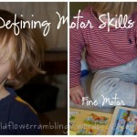 Defining gross motor and fine motor skills