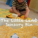 The Little Lamb {learning through literature}