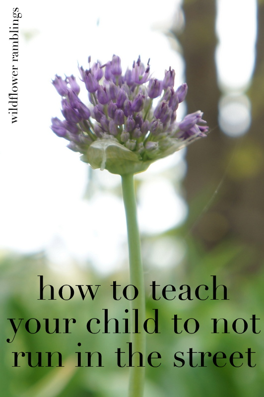 How to teach your child to not run into the street: My brother's story - Wildflower Ramblings