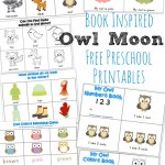 Owl Moon {Book-Inspired Preschool Printables}
