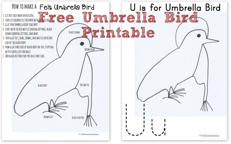 How to Make a Felt Umbrella Bird {ABC Animals in Felt} from Wildflower Ramblings