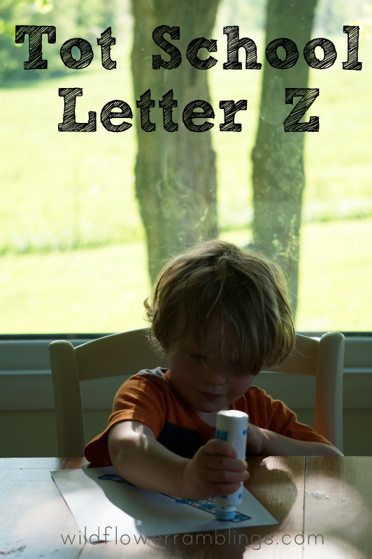 Tot School Letter Z - - wildflower ramblings