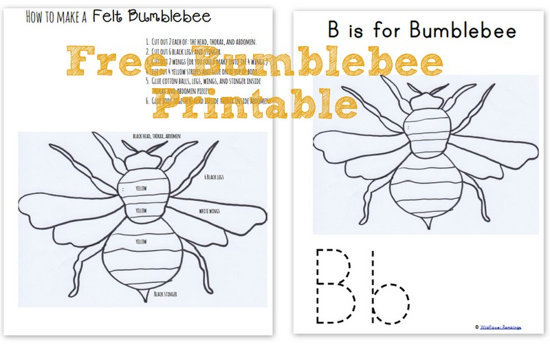 How to make a Felt Bumblebee with free printable!! {ABC Felt Animals} - Wildflower Ramblings