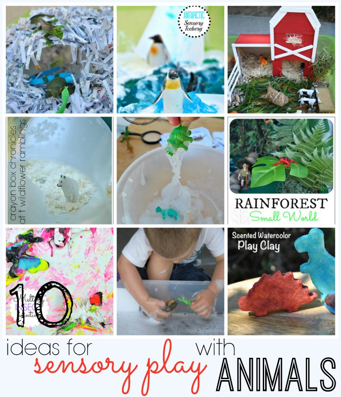 Sensory Play with ANIMALS - AMAZING play ideas from Crayon Box Chronicles -- Round up from Wildflower Ramblings #sensory