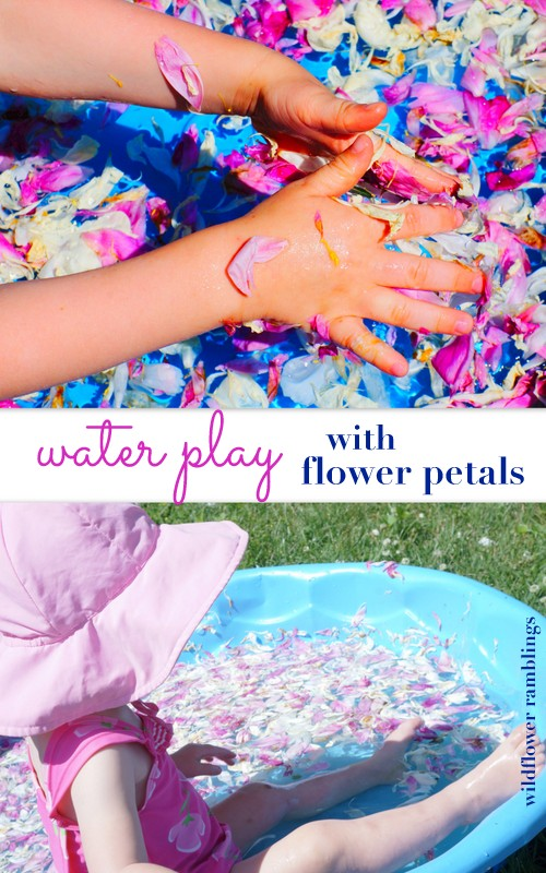 sensory play with water and flower petals from wildflower ramblings
