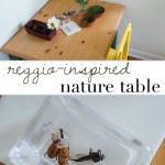 reggio inspired nature table