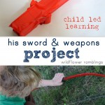 his swords and weapons - project based learning - wildflower ramblings