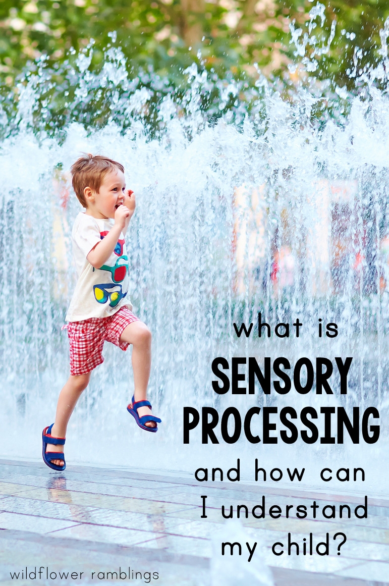 what is sensory processing disorder -- wildflower ramblings