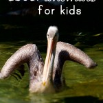 best books about animals for kids