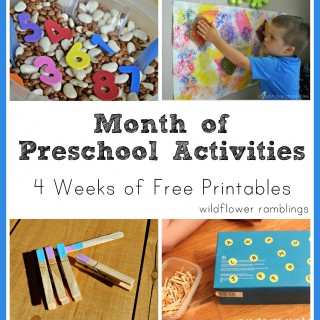 preschool activities: month one {printable four week schedule!}