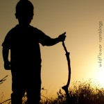 silhouette of a boy on a sunset background