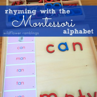 creating rhyming words with the montessori alphabet