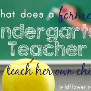 our kindergarten curriculum plans
