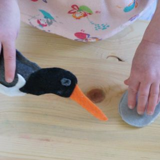 How to make a Felt Oystercatcher