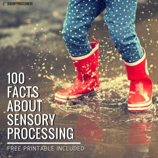 Sensory Processing for the Average Mom