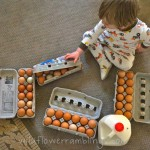 counting eggs from the farm