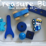 Treasure Bin: Blue Wooden Objects