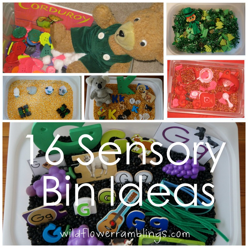 16 Sensory Bin Ideas from Wildflower Ramblings