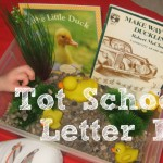 Tot School – Letter D