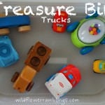 Treasure Bin: Trucks