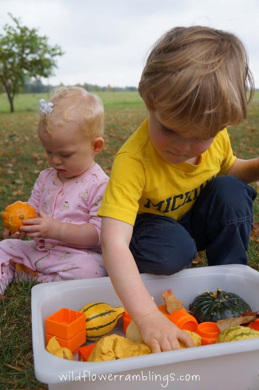 Fall Sensory Bin by Wildflower Ramblings