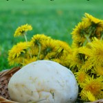 dandelion playdough recipe