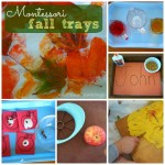 Montessori Fall Trays