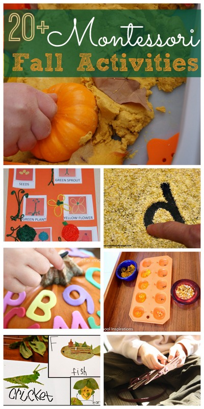 Montessori Fall Activities from Wildflower Ramblings