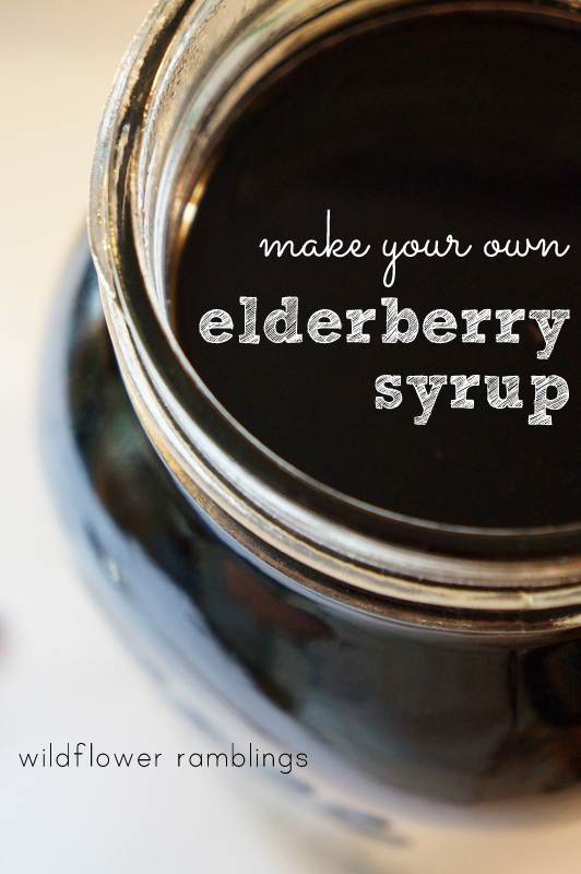 How to make elderberry syrup for your children from Wildflower Ramblings