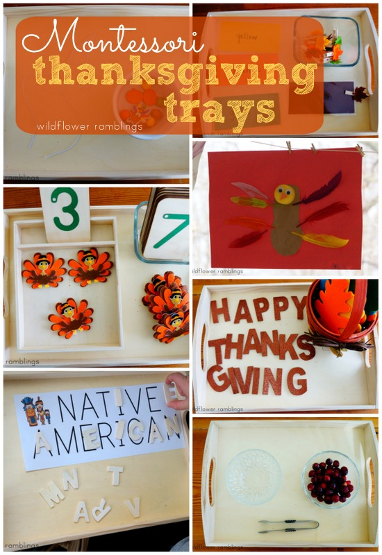 Montessori Thanksgiving Trays from Wildflower Ramblings