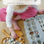 egg carton counting