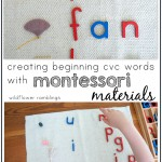 Creating short vowel words with Montessori alphabet