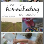 our summer homeschooling schedule