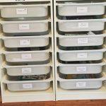 first grade curriculum & workboxes