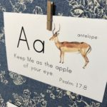 ABC Animal Bible Verse Cards: Songs for Saplings